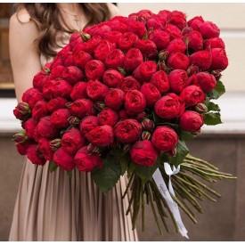 101 роза сорта Ред Пиано