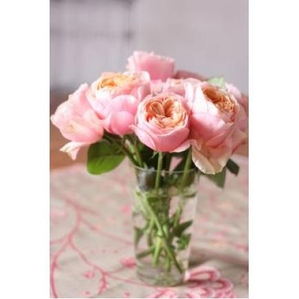 9 роз Вувузела в вазе