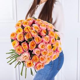 101 роза Вувузела